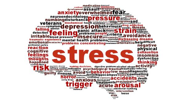 Doctor Dopps Chiropractic Get Rid of Stress